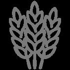 MasterGat - GAT Fertilíquidos
