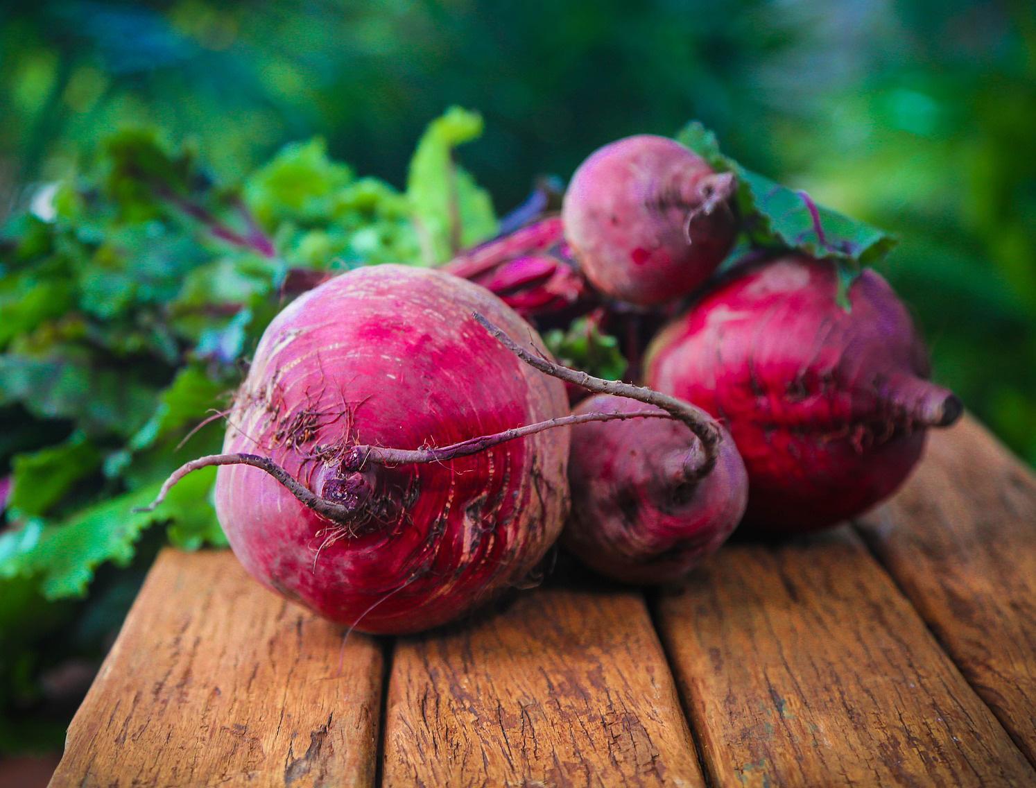 Remolacha - Cultivos Gat Fertilíquidos